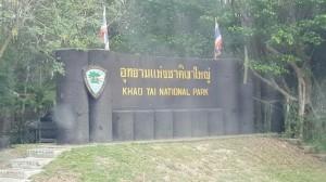 ชวนน้องรักษ์ป่า ๑๗๐๓๒๐ 0014