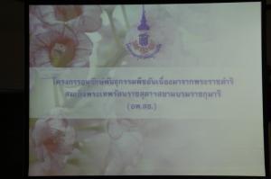 IMG 9453